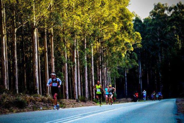 Knysna Forest Marathon 2019